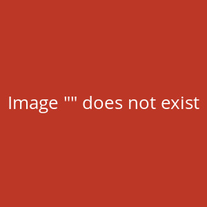 Simply the Best - Die Tina Turner Story - ***verlegt***...